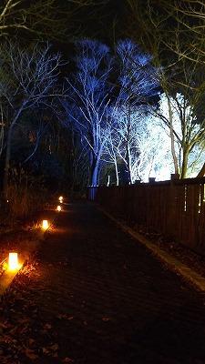 朝里川ライトアップ2014