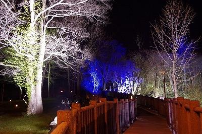 朝里川ライトアップ2014遊歩道