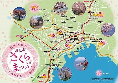 小樽市 桜マップ 2015