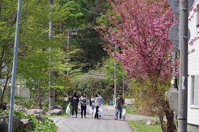 朝里川クリーンアッププロジェクト 風景3