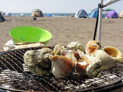 バーベキュー つぶ貝