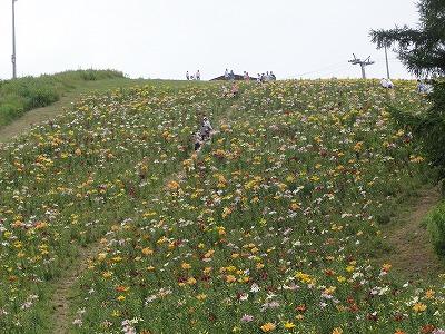 オーンズ春香山ゆり園2015