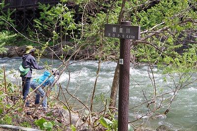 朝里川 釣り