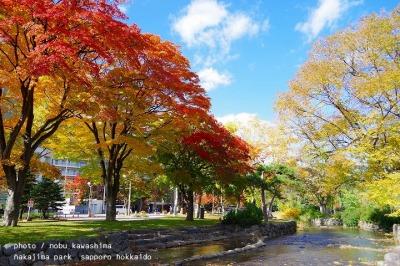 紅葉 2015 札幌 中島公園