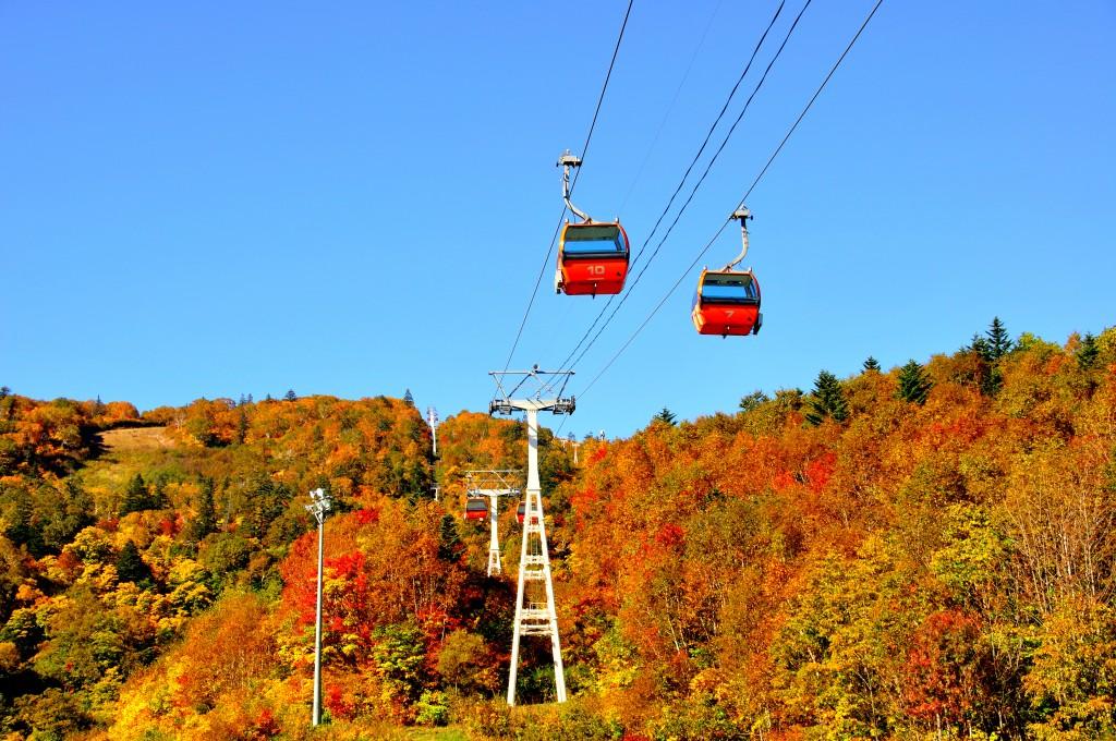 札幌国際スキー場紅葉ゴンドラ- 拝借写真
